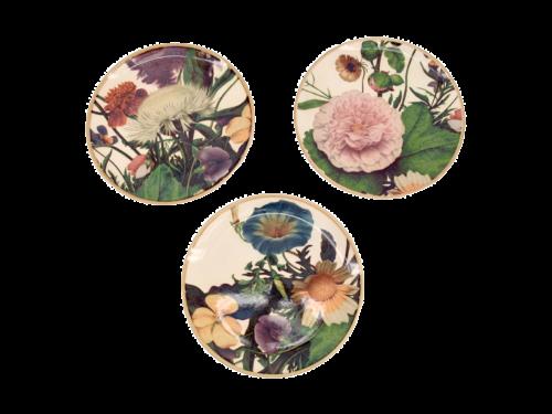 Paradise Plates for decoration