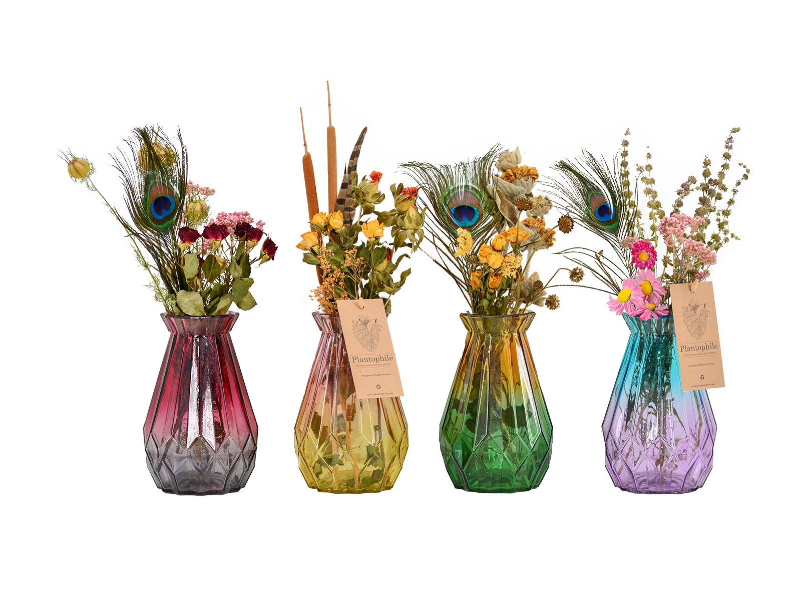 Dried Flowers in Diamond Vase Colored
