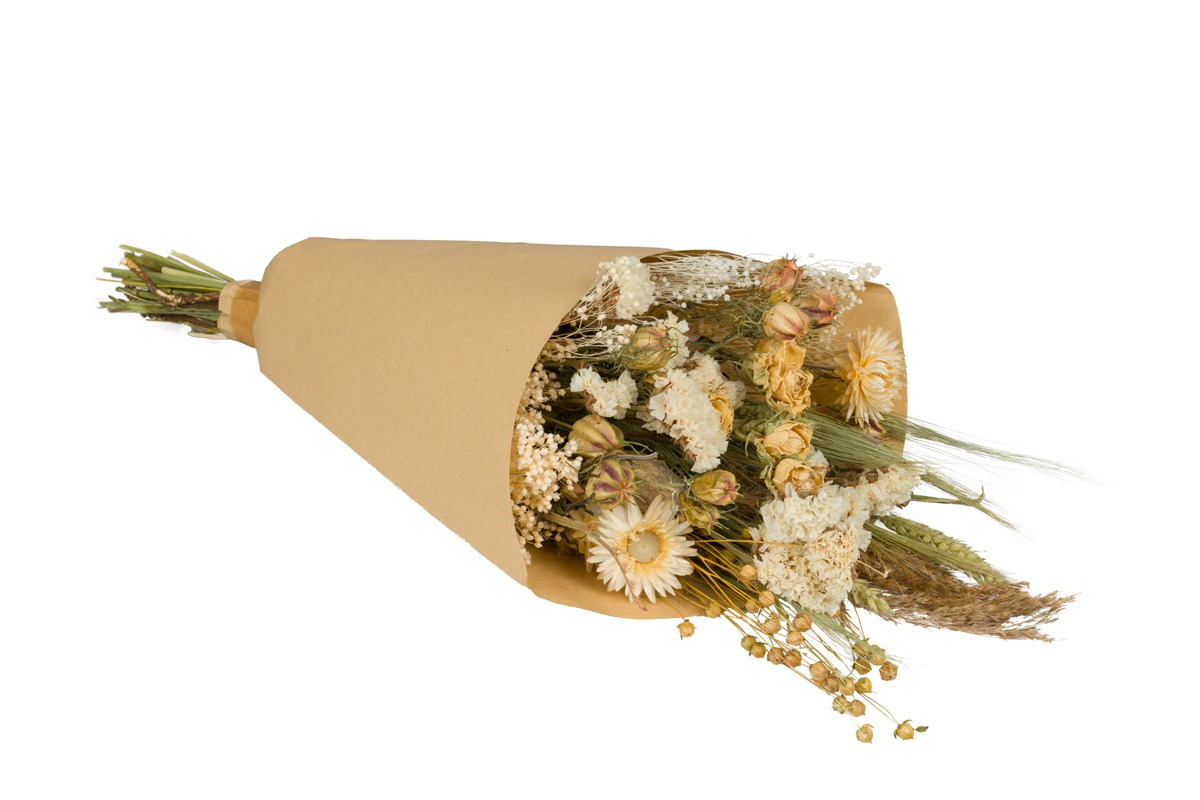 Dried Flowers Bouquet Natural White Medium Plantophile Com