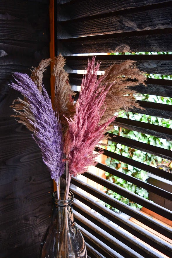 Fluffy Pampas Plumes in four colors