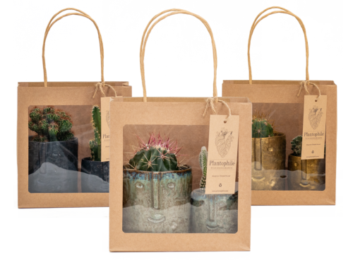 Gift Bags With Face Pots and Plants