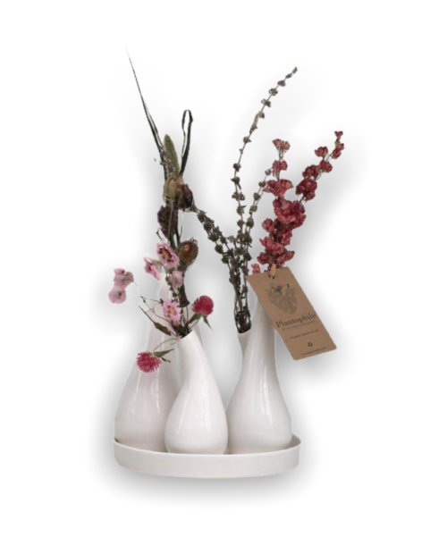 Design vase with dried flowers included