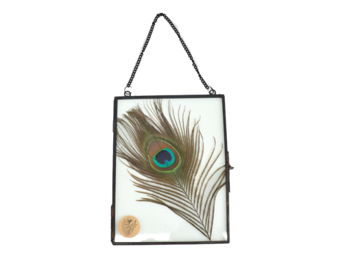 Black Photo Frame With Peacock Feather