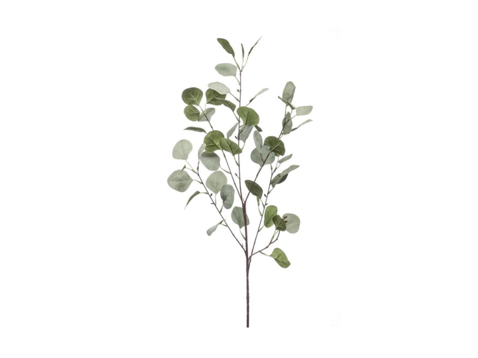 Ecalyptus Spray