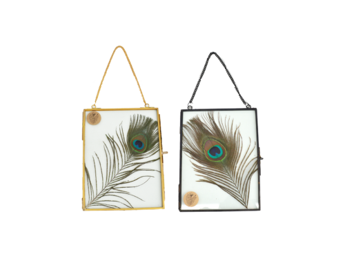 Peacock in photo frame small gold and black
