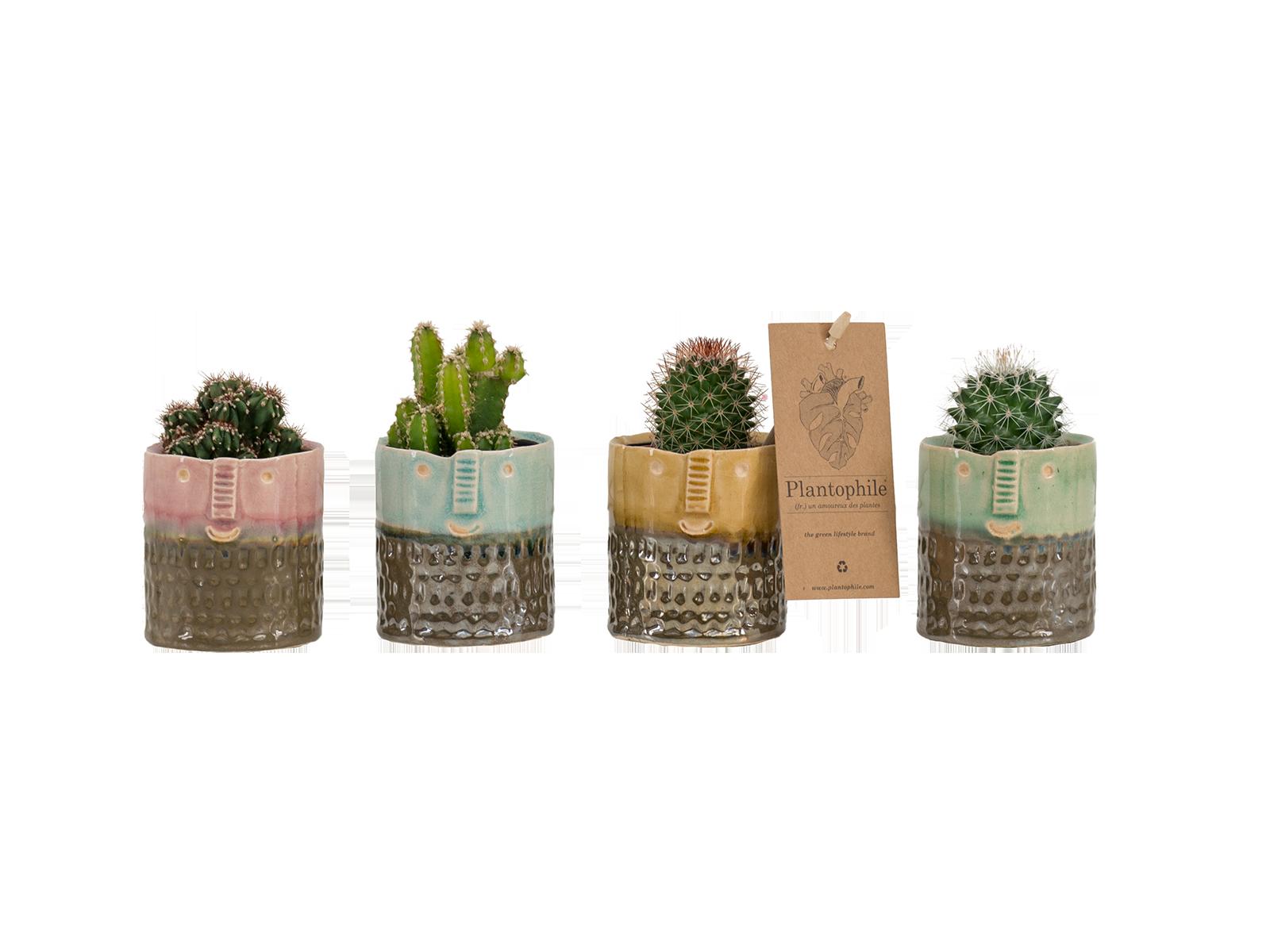 Face pots Yannique small - design by Plantophile